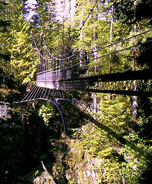 Drift Creek Falls Suspension Bridge, Lincoln City, Oregon