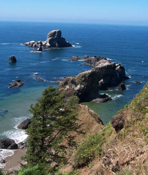 Sea Lion Rock - home of many different species of wildlife, Ecola State Park Oregon